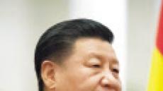 """시진핑 """"中 코로나19 정점 지나, 해외 역유입 방지가 최우선"""""""