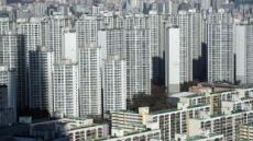 [12·16 이후 서울 아파트 '희비'] 강남은 '관망', 非강남은 '중저가 위주 상승'