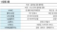 "VI금융그룹 ""글로벌 금융 플랫폼 도약 할 것"""
