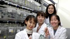 혈관신생 과정 원발성 섬모 역할 규명…새 항암제 개발 단초