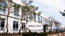 평택도시公, 설 연휴 공영주차장 무료 개방