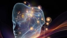 대한민국 AI 강국 도약과제는…연구데이터 공유 활용이 관건