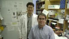 셀리버리, 세포투과성 유전체 조절효소 'iCP-Cre' EU 특허 등록완료