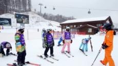 나무스키 타던 고원 아이들의 자녀들, 진짜 스키 타고 고고씽~