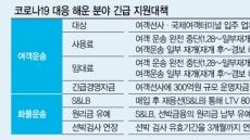 한중 여객운송 '올스톱' 직격탄…정부, 긴급자금 300억 투입