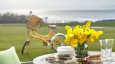 호텔가 봄맞이, 느림의 미학…색깔·풍경·오후의 정취
