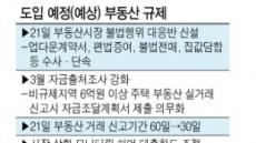 '풍선효과' 차단 주력…이번주, 19번째 부동산 대책 나온다
