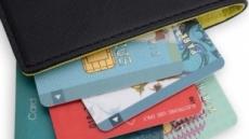 카드 해외 사용 10년만에 감소… 환율 영향