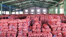 '올해 5만t 과잉생산' 마늘, 첫 수출길에 오른다…정부 비축분