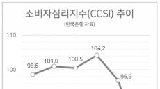 3월 소비심리 역대 최대 하락…집값은 상승기대 유지