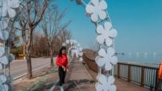 반려동물과 함께 걷는 길…평택호·선자령·한탄강 갈까