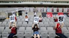 '리얼돌 FC서울'에 제재금 1억 중징계한 이유