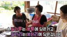 실버+청춘 '할프리카TV' '문화로 청춘' 시즌 2