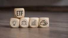 미국發 '액티브 ETF' 인기 한국에도 퍼질까?