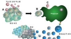 癌세포에 표적신호 이식…항암면역치료 효율 높인다