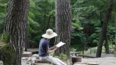 '자연은 안전하다' 한국관광공사 추천 힐링의숲 6선