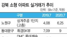 '패닉바잉' 국면 강북 소형도 10억 '훌쩍'