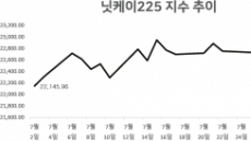 [itM] 日, A등급도 '아슬'...닛케이 ELS 조기상환 '위태'