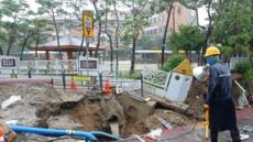 폭우에 강풍까지…서울 곳곳 나무 쓰러지고 도로 침하
