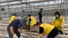 수원 재난재해봉사단, 안성 일죽면 복구작업 지원