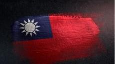 중국·대만, 피지서 폭행사건 두고 책임공방 일파만파