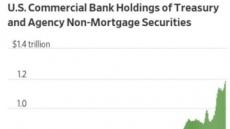 투자처 못찾은 美은행…국채 샀다