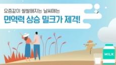 우유자조금관리위원회, 우유로 면역력 건강 챙기는 '우유활용 티백밀크' 3선 공개
