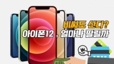 """""""비싸도 산다?"""" 상륙 임박 '아이폰12' 한국서 얼마나 팔릴까 [IT선빵!]"""