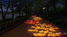 송파구, '석촌호수 단풍&낙엽 축제' 개최
