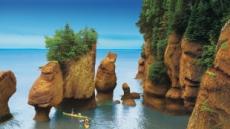 집콕 캐나다 여행, 기묘한 펀디, 신비한 우드 버팔로, 입이 쩍!