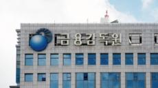 """금감원 """"금융그룹 고유자산 통합운용 위험"""""""