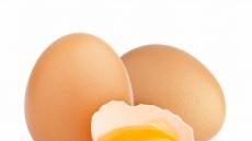 대한영양사협회, 코로나19로 인한 근감소증 예방 식품으로 계란 등 고단백 식품 추천