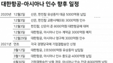 韓 미워하는日…KAL+아시아나 승인 거부할까