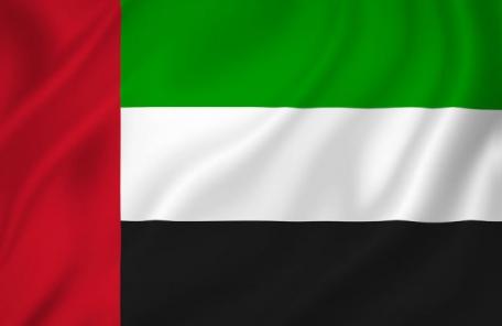 졸부 전형 보여준 UAE 8공주… 10년 끌다 벌금형