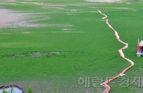 [헤럴드포토] '축구장같은 저수지 바닥'