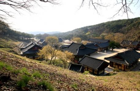 """""""영천으로 오세요""""…영천시 가을 여행주간 주요 관광지 할인 이벤트 진행"""