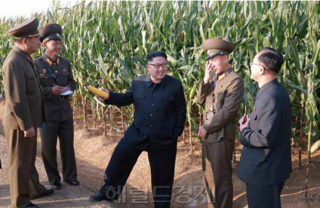 김정은 공개활동, 軍 분야 활동 편중 심화
