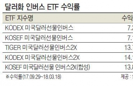 """투자매력 잃는 달러화…""""신흥국 통화 갈아타라"""""""