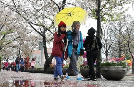 미세먼지 계속 '나쁨'ㆍ일요일엔 비…중금속 비 막아주는 우산 꼭~