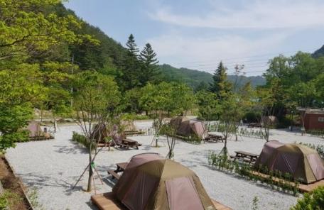 폐교에서 캠핑을…경북 봉화에 7번째 '서울캠핑장' 문 활짝