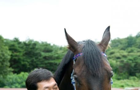 [헤럴드e렛츠런] 2018년 경마최강팀 선발전…19개 결선진출팀 확정