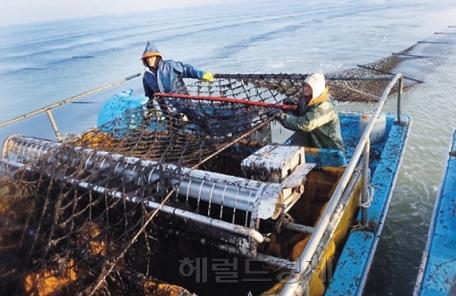 겨울철 한파ㆍ폭설 대비 해양수산시설 미리 점검한다