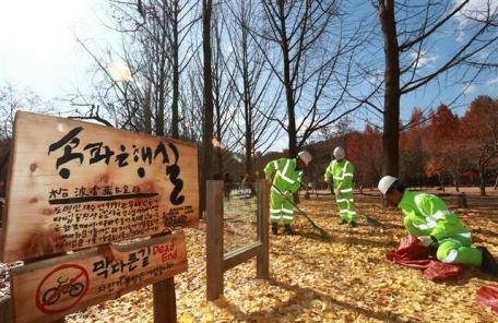 반짝 아이디어로 되살아난 낙엽 파워!!!