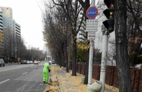 노원구, 아파트 단지 낙엽 수거해 농가 퇴비로 재활용