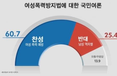 (14:30 이후)여성폭력방지법, 찬성 60.7% vs 반대 25.4%
