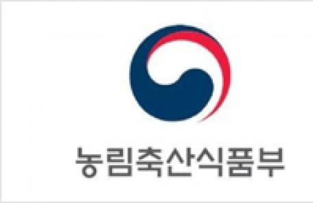 """""""농어촌 버스 노선 폐지 막는다""""…예산 552억원 투입"""