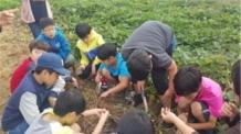광진구, 4월부터 '어린이 현장체험활동' 다채