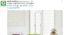 '노룩패스' 김무성의 캐리어…G마켓의 센스(?)있는 트윗