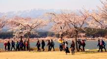 바닷바람 불어 좋은날…해파랑길 강릉 걷기축제