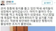 주말용//文 '퍼스트캣' 찡찡이 靑 '출입제한' 조치 풀렸다